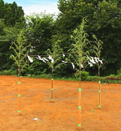 地鎮祭の竹を購入する時は?どうやって用意する?