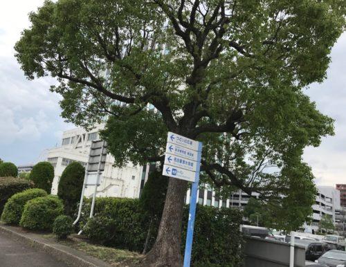 名古屋港水族館に近い駐車場は?