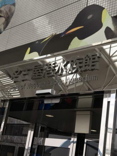 名古屋港水族館のナイトアクアリウムのチケットは?取り方は?