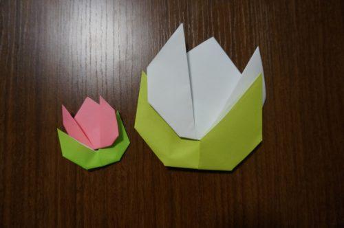 手紙の折り方 花は?詳しい作り方を図解で解説!
