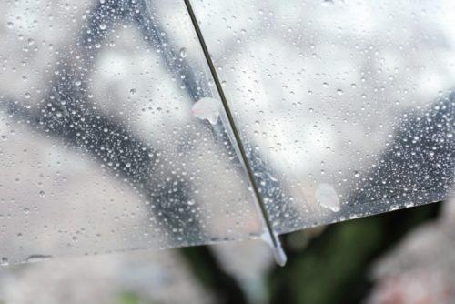 梅雨で部屋にカビが生えた時の対処法とは?