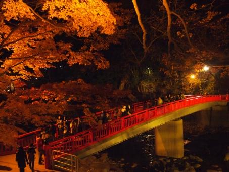 香嵐渓のライトアップでの場所おすすめは?