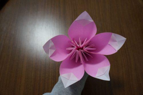 飾り折り20-2