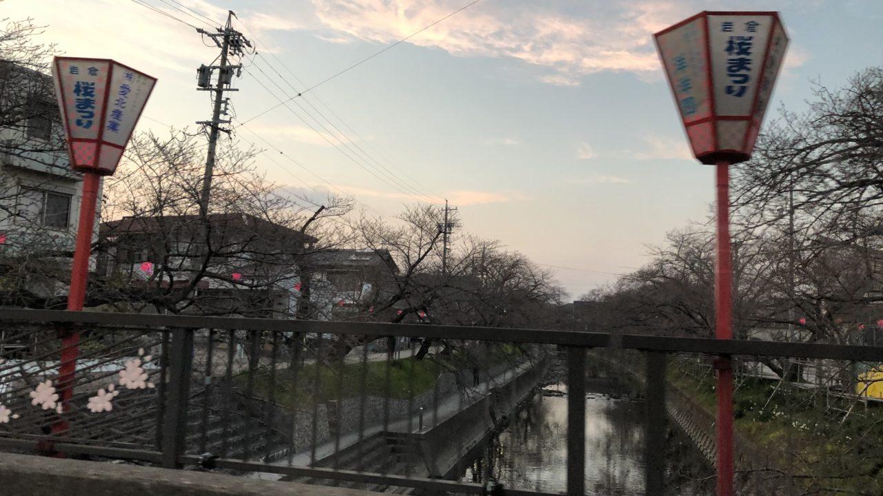 岩倉桜まつりのアクセス!駐車場や岩倉臨時駐車場も地元民の私が写真画像付で紹介!