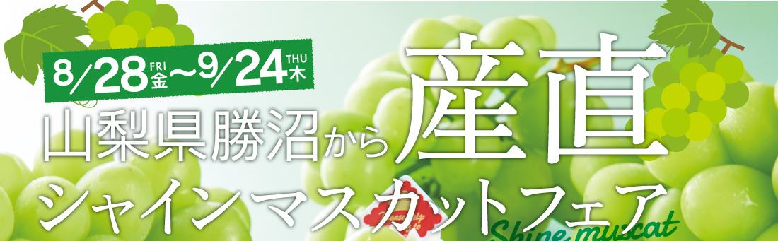 シャトレーゼ産直シャインマスカットフェアの販売期間☆値段も紹介!
